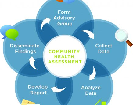 community health needs assessment essay