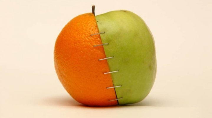 Genetically Modified Food – The Benefits and the Risks