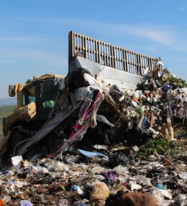 The Automobile: Profit and Status, Waste and Pollution