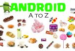 All About the Android Operating System