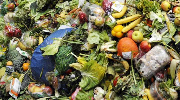 Food Waste: Problem to Profit